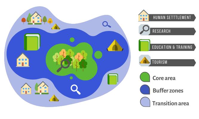 biosferos detalių žemėlapis