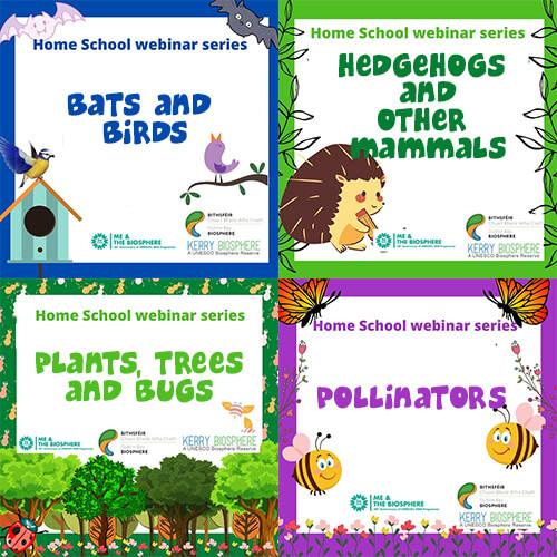 Gamtos ciklas, internetiniai seminarai pradinėms mokykloms