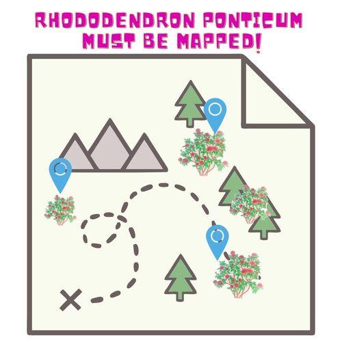 """animacinis žemėlapis, kuriame rodomi rododendrų augalai su žymekliais, tekstas sako: """"rododendras turi būti susietas su žemėlapiu"""""""