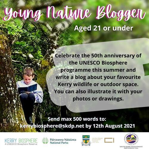 Блогър на младата природа, момче, седнало на дърво